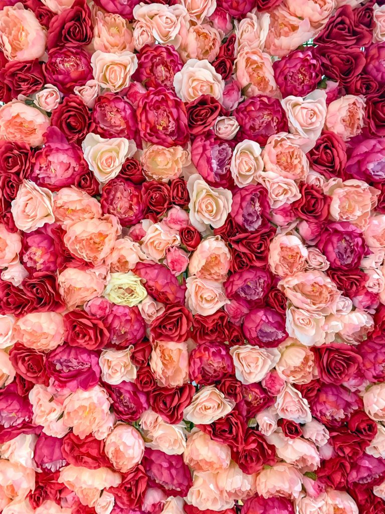 red and pink flower wall.